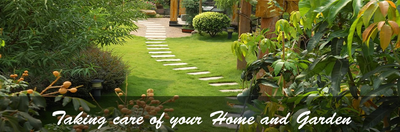 Taking care of your Home and Garden